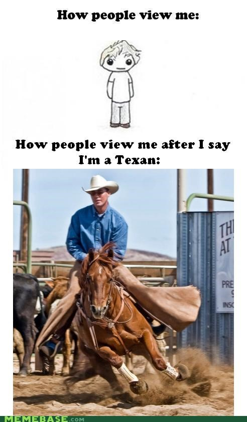 horses,How People View Me,Pie Chart,texas