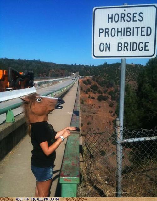 best of week bridge creepy head horse IRL mask - 5144538368