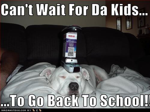 education mixed breed school school days skool daze - 5144848128