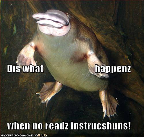 animals,duck-billed,FAIL,I Can Has Cheezburger,instructions,platypus,reading,ugly,weird