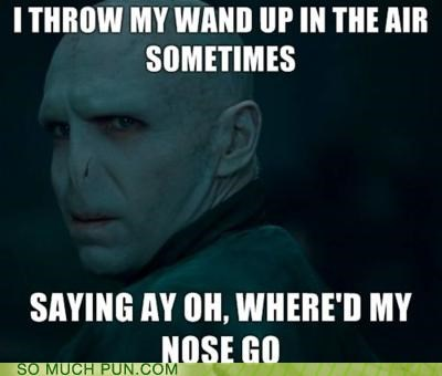 dynamite,Hall of Fame,Harry Potter,lyrics,parody,rhyming,similar sounding,song,tayo cruz,voldemort