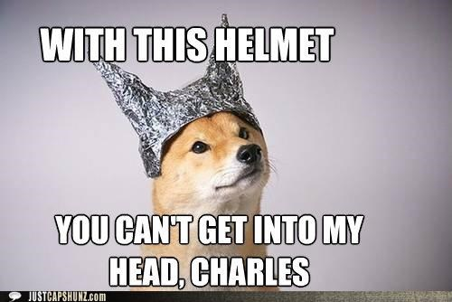 animals,comics,dogs,Hall of Fame,i has a hotdog,Magneto,mind reader,tin foil hat,x men