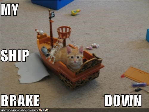 break caption captioned cat down lolwut my ship - 5146119936
