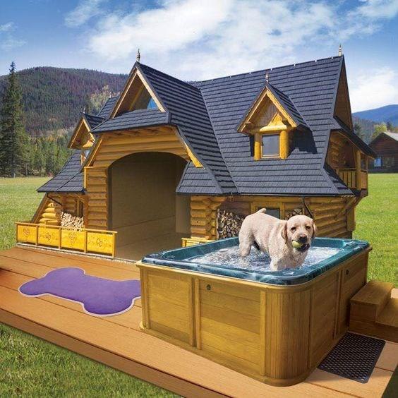 Pet Homes