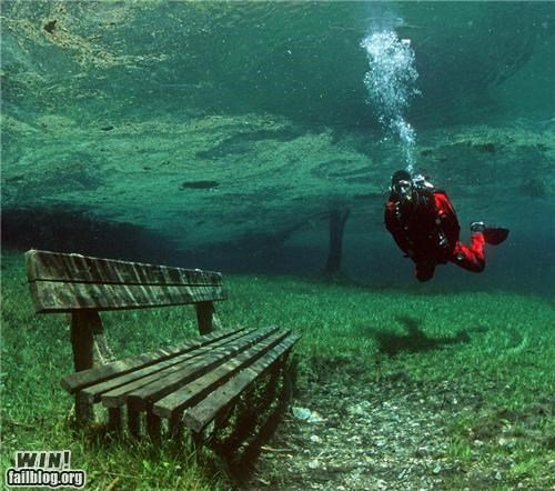 bench,flooded,park,scuba,underwater