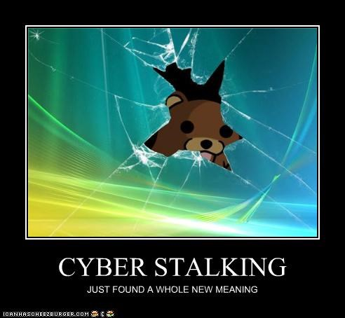 CYBER STALKING JUST FOUND A WHOLE NEW MEANING