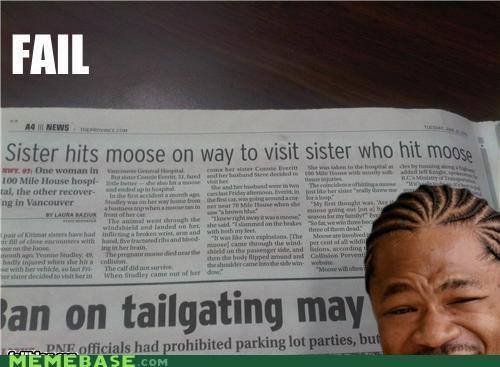 Yo sis, i herd you like moose...