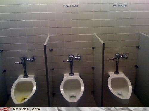 bathroom,flush,signs,urinal