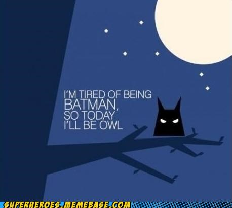 Awesome Art batman cute Owl - 5148488704