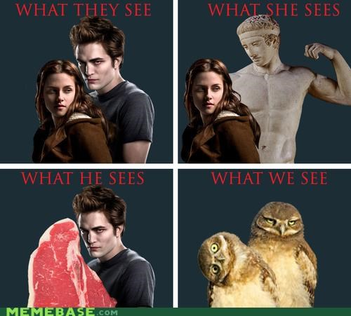 how people see me,meat,Owl,statue,twilight,vampire,wtf