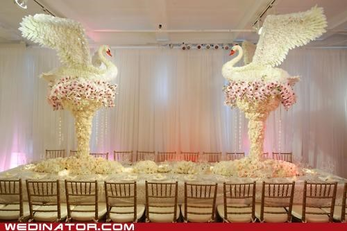decorations,funny wedding photos,swans,table