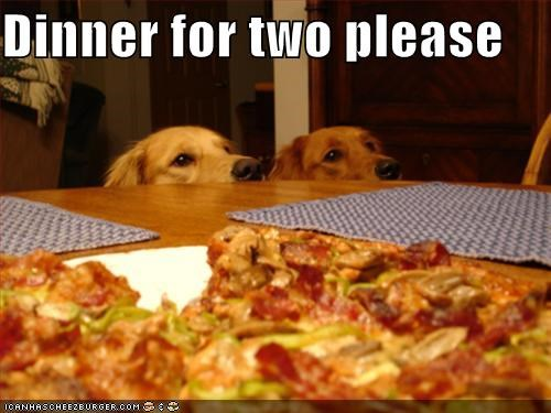 dinner dinner for two food golden retriever human food noms pizza - 5148857856