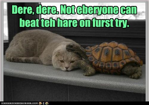 Dere, dere. Not eberyone can beat teh hare on furst try.