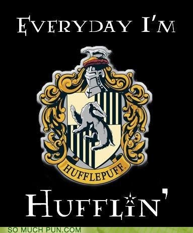 everyday-im-hustling Hall of Fame Harry Potter hufflepuff parody rick ross similar sounding song - 5150920704