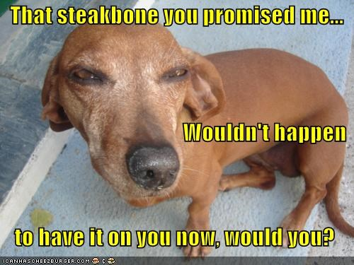 That steakbone you promised me...                                          Wouldn't happen    to have it on you now, would you?