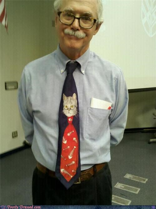cat,professor,teacher,tie