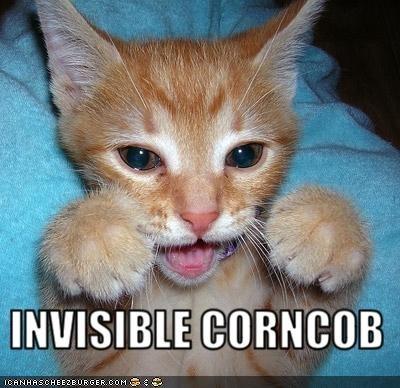 classics,corn,corncob,invisible