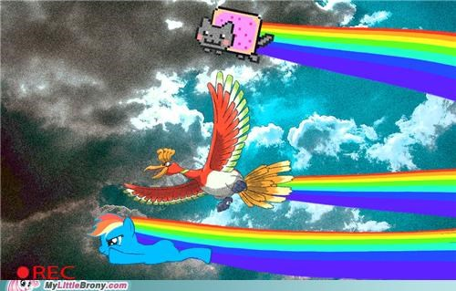 crossover,ho-oh,Nyan Cat,race,rainbow dash,rainbows