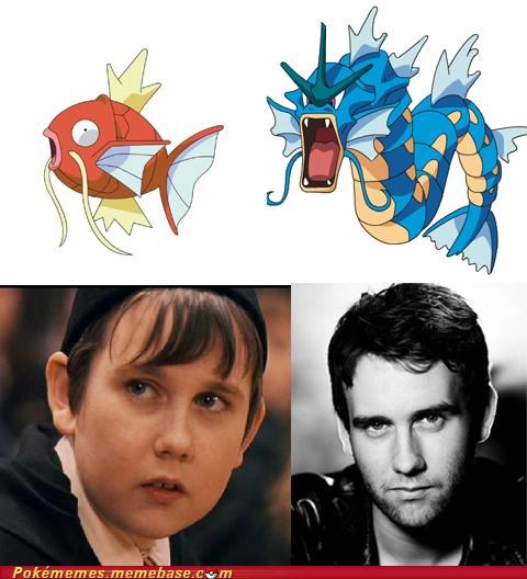 best of week Evolve gyarados Harry Potter IRL evolution level 20 magikarp neville longbottom - 5156148736