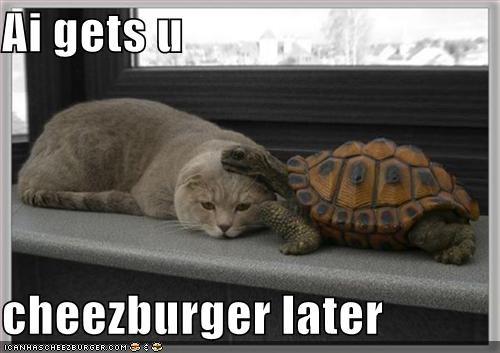 Cheezburger Image 5156887296