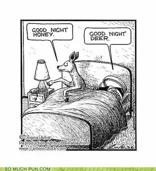 bed dear deer double meaning Hall of Fame homophone honey literalism sleeping - 5156922112