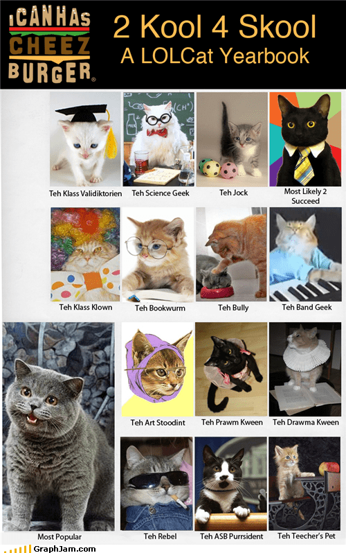 back to school,cute,lolcats,yearbook