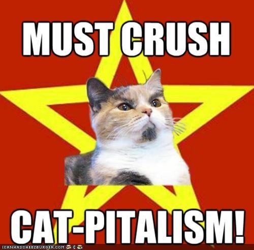 capitalism Lenin Cat memecats Memes vladimir lenin - 5157473536