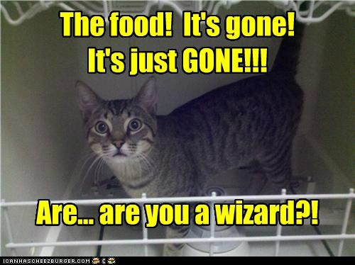 The food! It's gone! It's just GONE!!! Are... are you a wizard?!