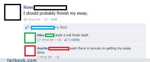 Norway,country puns,Finland,scandinavia,finnish