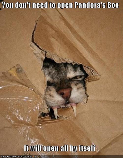 automatic box caption captioned cat DIY dont need open pandora pandoras-box - 5158614272