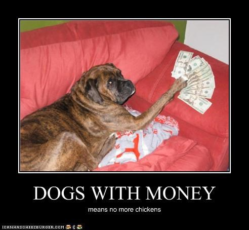 DOGS WITH MONEY means no more chickens