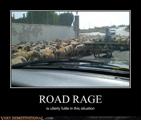 ROAD RAGE is utterly futile in this situation