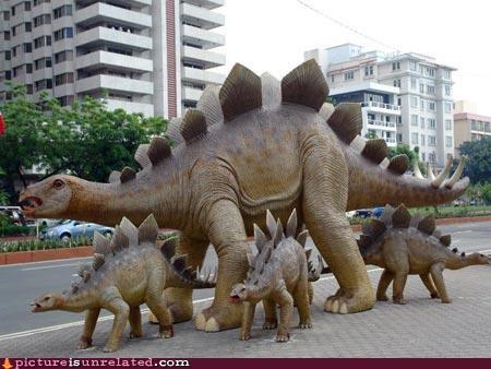 dinosaurs stegosaur wtf - 5159632896