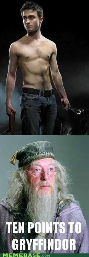 dumbledore gay Harry Potter horses Memes wizards - 5160099328