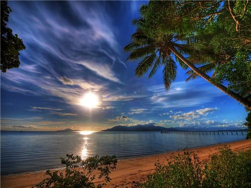 australia beach blue clouds coral ocean getaways Hall of Fame pacific ocean Palm Tree queensland south pacific stunning sunrise - 5160492800