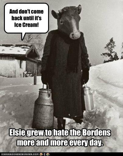 cow funny historic lols wtf - 5160561664