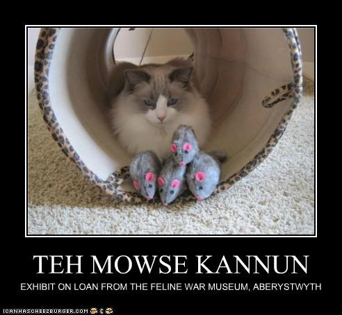 TEH MOWSE KANNUN EXHIBIT ON LOAN FROM THE FELINE WAR MUSEUM, ABERYSTWYTH