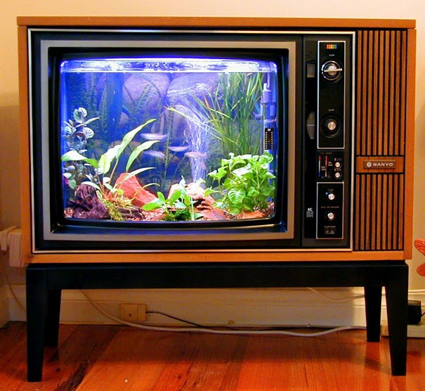 cool design creative aquarium fish home - 5160709