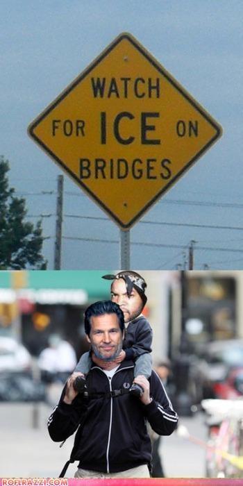 actor celeb funny ice cube jeff bridges Music rap shoop - 5160968448