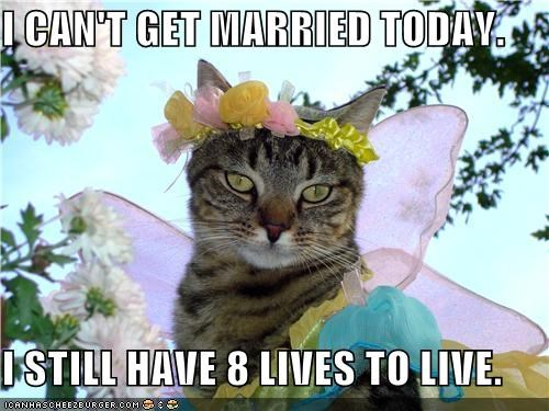 afraid,cant,caption,captioned,cat,costume,dressed up,eight,get,have,live,lives,living,married,reason,still,today