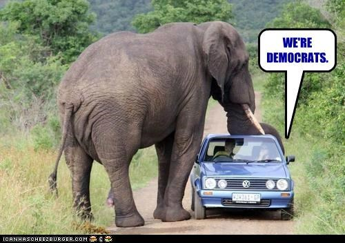 Meme of an elephant about to sit on a car with the captions saying that we are Democrats, with the joke being that elephants mush be Republicans