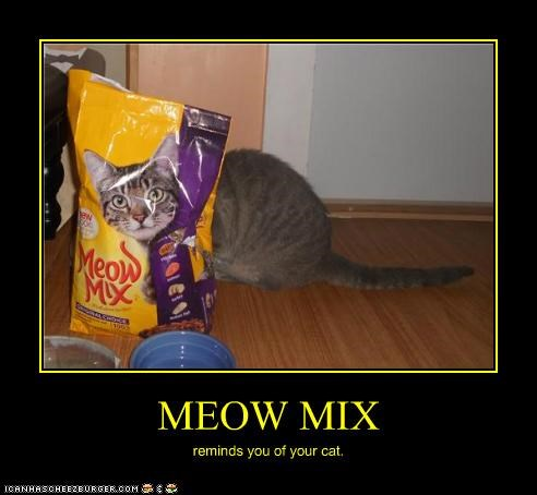 MEOW MIX reminds you of your cat.