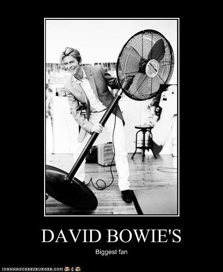 DAVID BOWIE'S Biggest fan