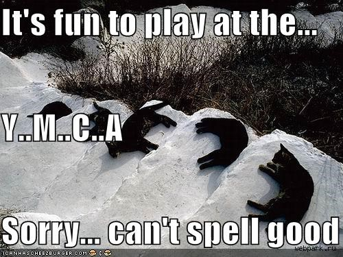 It's fun to play at the... Y..M..C..A Sorry... can't spell good