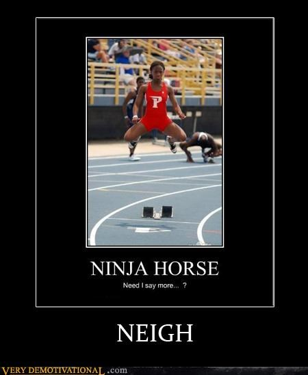 invisible horse neigh nothing more to say Pure Awesome - 5165274624