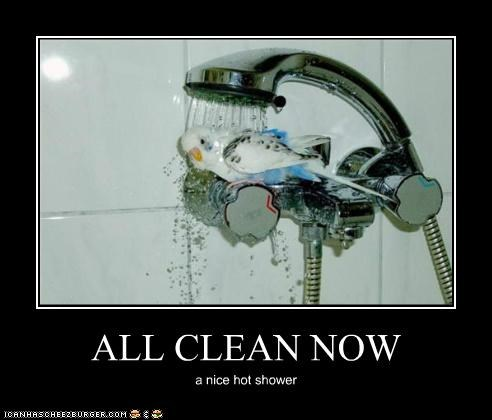 ALL CLEAN NOW a nice hot shower
