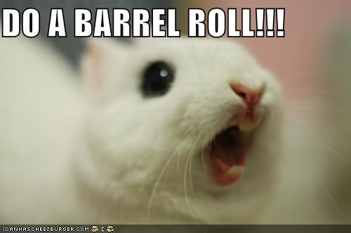 animals,barrel roll,bunnies,do a barrel roll,I Can Has Cheezburger,rabbits,yelling