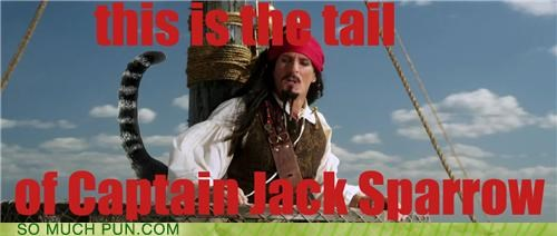 captain double meaning homophone jack sparrow Johnny Depp literalism Pirates of the Caribbean song tail tale - 5165759744
