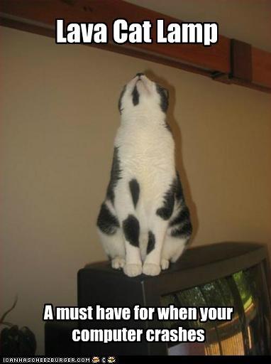 caption captioned cat computer distraction lava shape - 5167026176