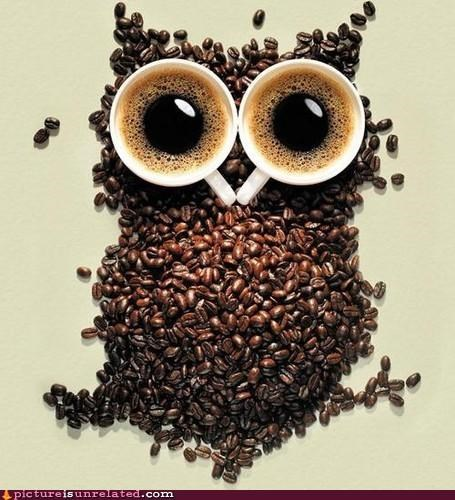 art awake coffee Owl wtf - 5167069440